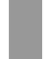 Chartered Insurance Broker logo - Sentinel Risk